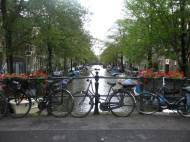 Dumpster Diving for Dinner and Back Riding a Bicycle in Amsterdam