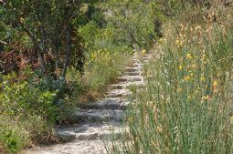 Cinque Terre's inland trails